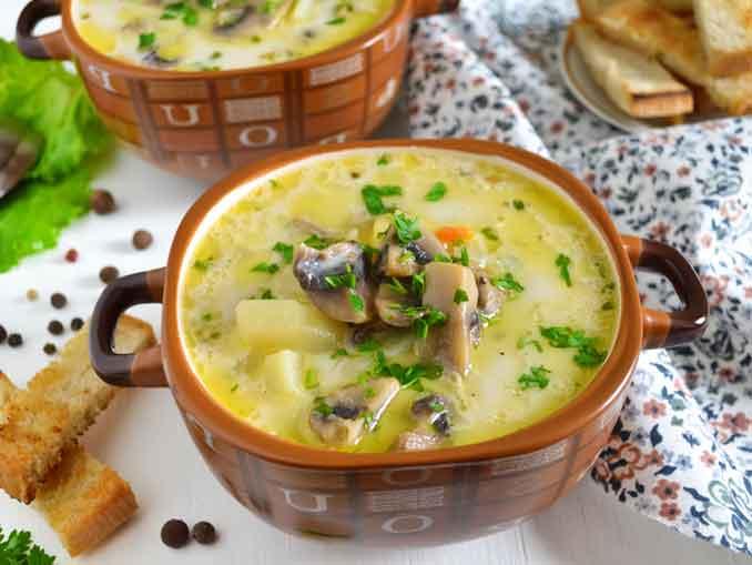 Как приготовить сливочный суп с грибами: самый вкусный и простой рецепт