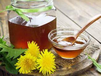 Как приготовить одуванчиковый мед или варенье из одуванчиков