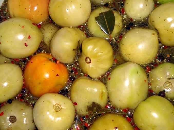 Как замариновть на зиму зеленые помидоры: заготовка из СССР
