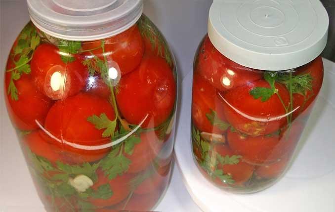 Рецепт квашеных помидор на зиму