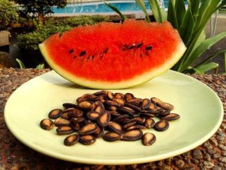 Арбузные семечки для вашего здоровья: простые и ценные рецепты!